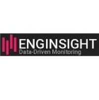 logo-enginsight-web